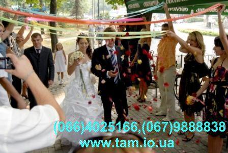 Тамада і музика на весілля, ювілей, день народження у Києві.